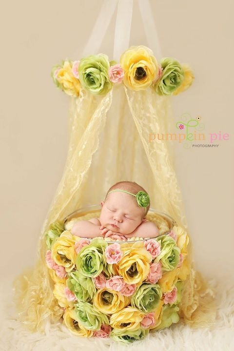 11 15 Cute Newborns Baskets Photography ideas 2015 15 Cute Newborns Baskets Photography ideas 2015 1116