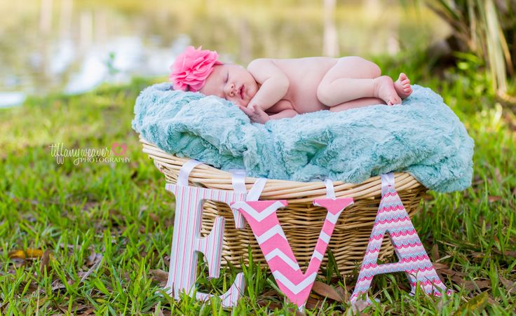 14 15 Cute Newborns Baskets Photography ideas 2015 15 Cute Newborns Baskets Photography ideas 2015 146
