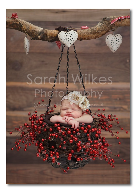 6 15 Cute Newborns Baskets Photography ideas 2015 15 Cute Newborns Baskets Photography ideas 2015 624